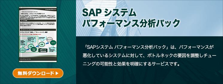 SAPシステム パフォーマンス分析パック
