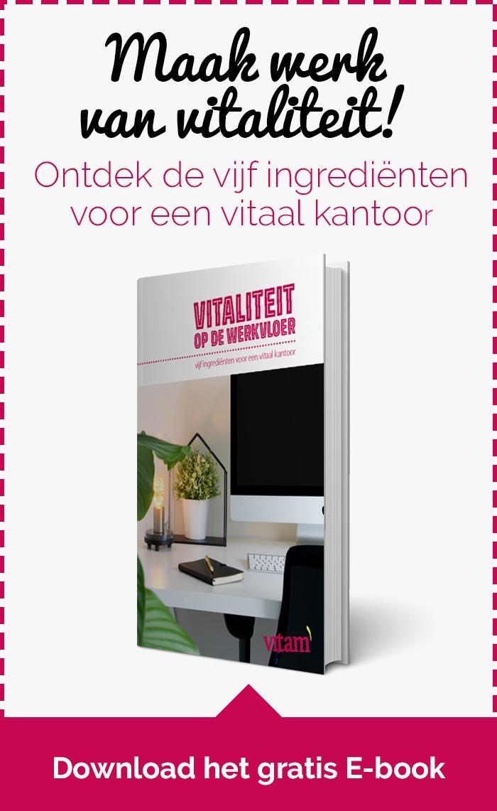Download E-book Vitaliteit op de Werkvloer