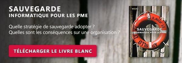 Livre Blanc - Sauvegarde Informatique pour les PMEs