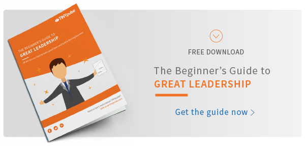 The Beginner's Guide to Great Leadership