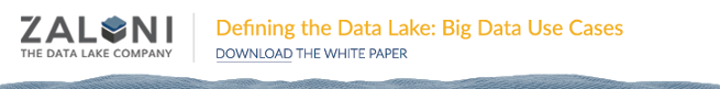 Defining the Data Lake White Paper banner