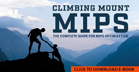 Complete guide to MIPS Optimization.
