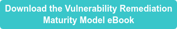 Download the Vulnerability Remediation Maturity Model eBook