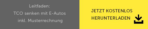 Leitfaden: TCO senken mit E-Autos inkl. Musterrechnung jetzt herunterladen Button