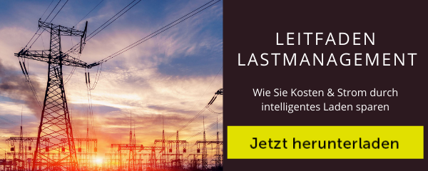 Download Button Lastmanagement Leitfaden