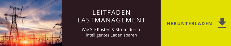 Download Button Leitfaden Lastmanagement
