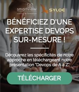 expertise sur mesure devops - Syloe et Smartview