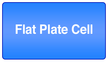 Flat Plate Cell