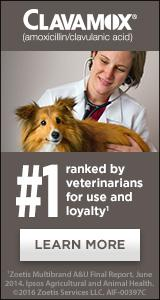 Clavamox - Ranked #1 by veterinarians for use and loyalty. Learn More.