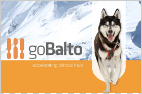 goBalto Corporate Brochure