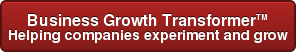 Business Growth Transformer - Helping companies experiment and grow