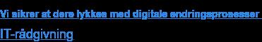 Vi sikrer at dere lykkes med digitale endringsprosesser  Gå til IT-rådgivning