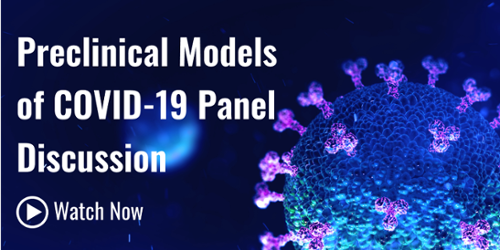 Watch the recording of the Preclinical Models of COVID-19 Panel Discussion