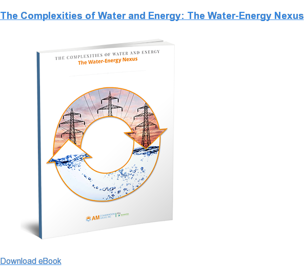 The Complexities of Water and Energy: The Water-Energy Nexus Download eBook