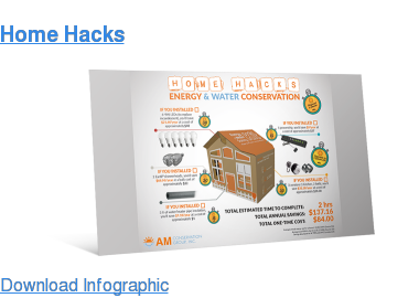 Home Hacks Download Infographic