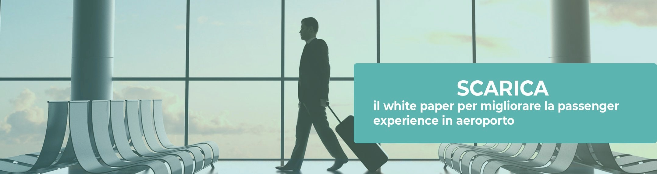 white paper travel