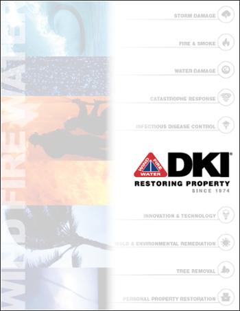 DKI Brochure