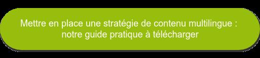 Mettre en place une stratégie de contenu multilingue : notre guide pratique à télécharger