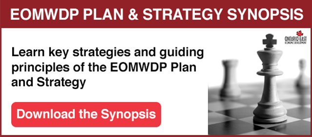 EOMWDP Plan and Strategy Synopsis