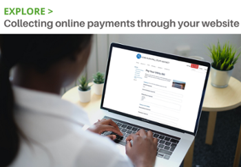 Explore: Collecting online payments through your website