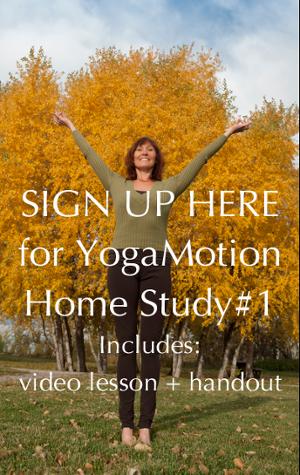 YogaMotion-Mod1-Lesson