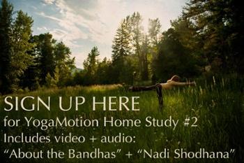 YogaMotion-HomeStudyLesson2
