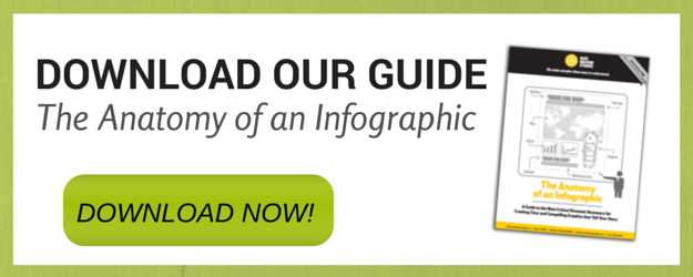 the anatomy of an infographic guide