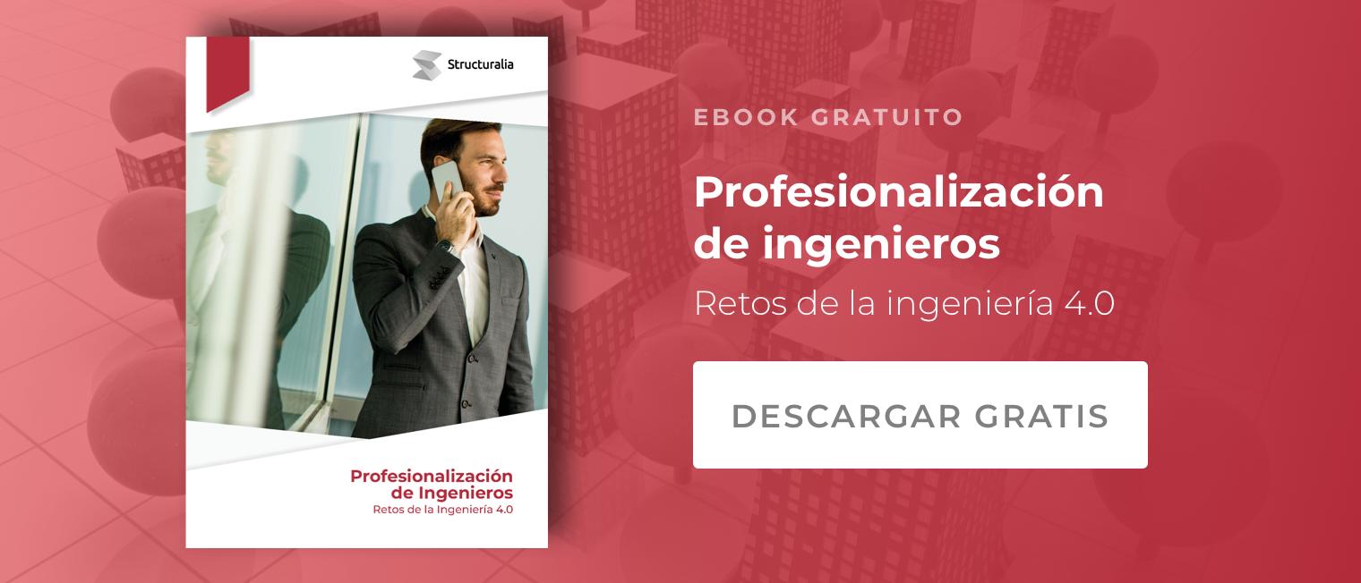 Guía Gratuita Profesionalización de Ingenieros