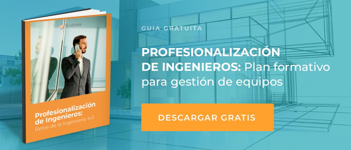 Guía Gratuita Profesionalización de equipos de ingenieros