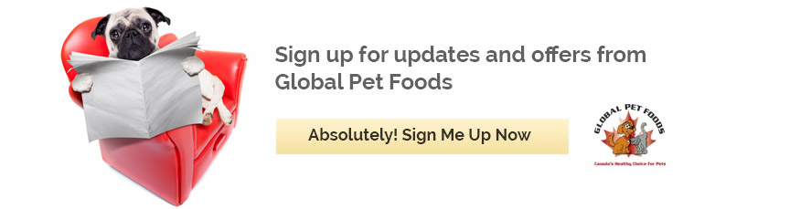 Sign up for updates from Global Pet Foods New Brunswick