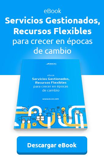 CTA-ebook Servicios gestionados, Recursos Flexibles