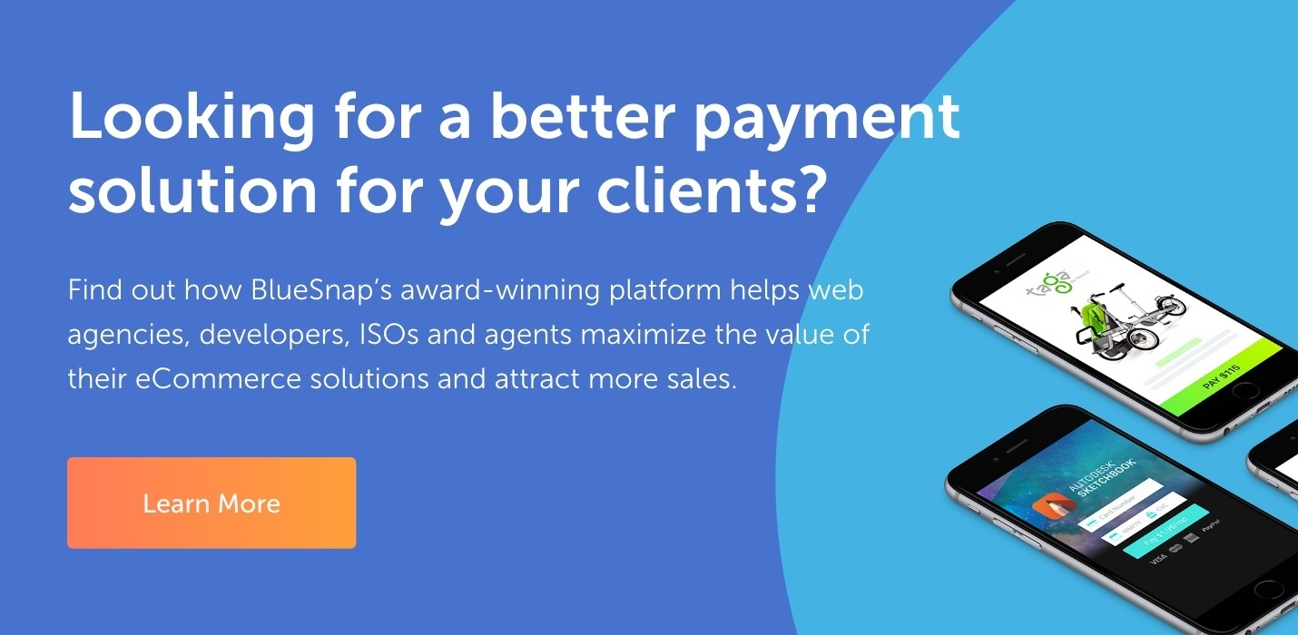 BlueSnap-Referral-Partner