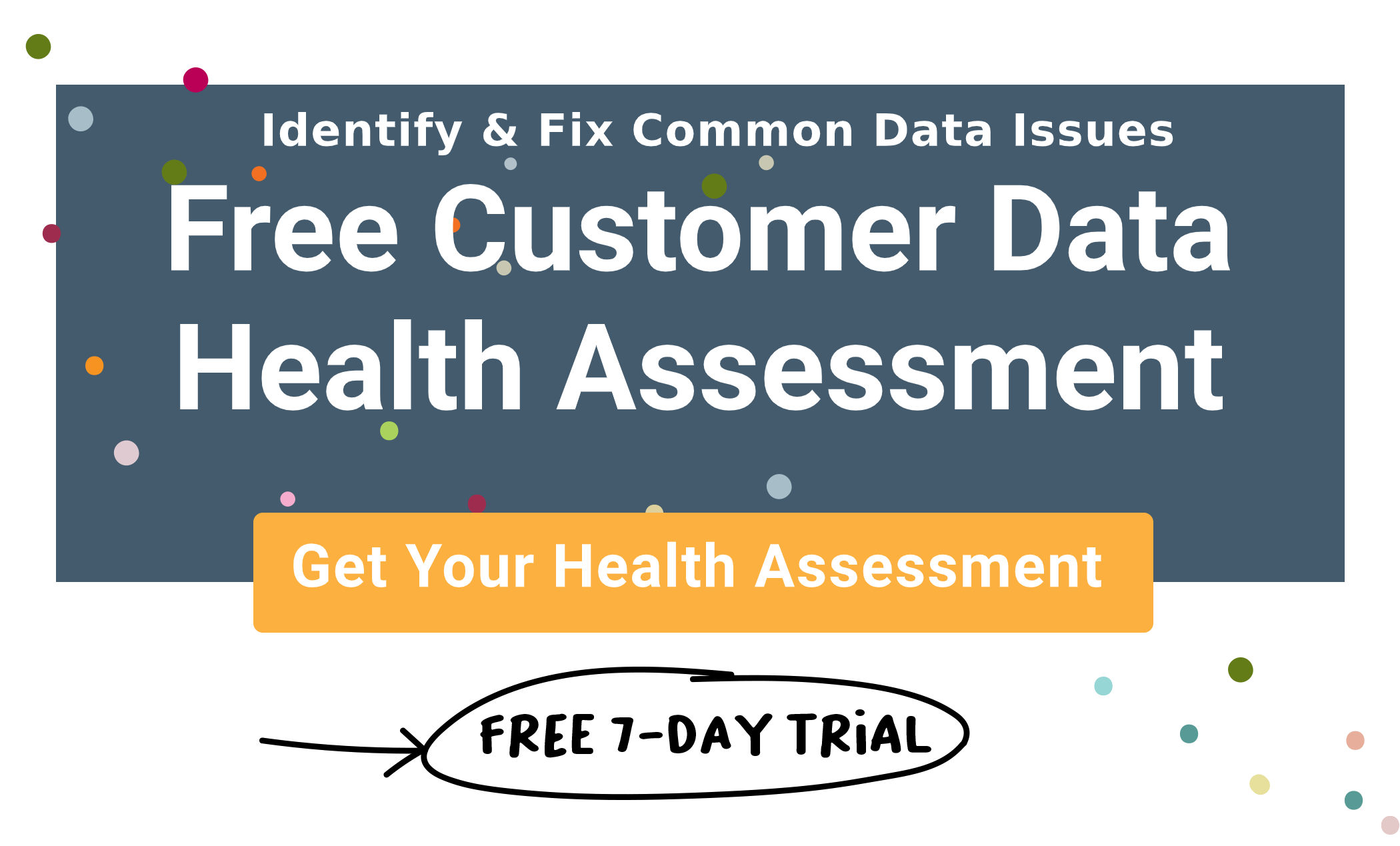 Free Customer Data Health Assessment