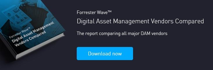 Forrester Wave Report: digital asset management compared
