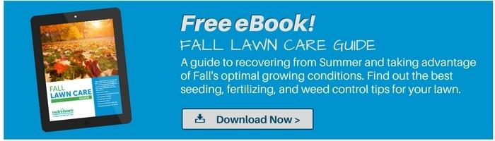 Download your free Fall Lawn CareeBook >