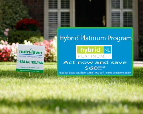 Vancouver - Hybrid Platinum Program