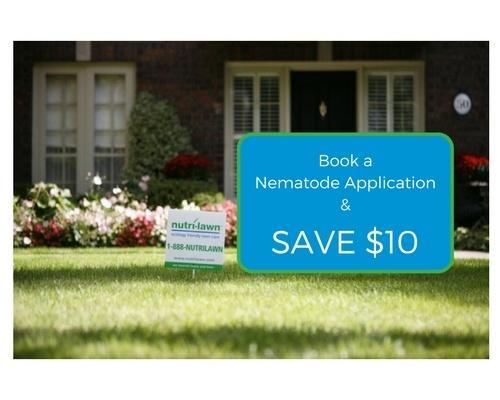 Ottawa - $10 Off Nematodes