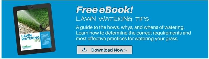 Download your free Lawn Watering Guide >