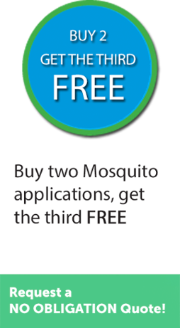 Buy two Mosquito applications, get the third FREE