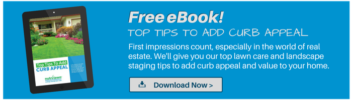 Download your free Curb AppealGuide >