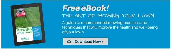 Download your free Lawn Mowing Guide >