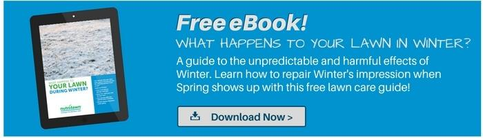 Download your free Winter eBook >