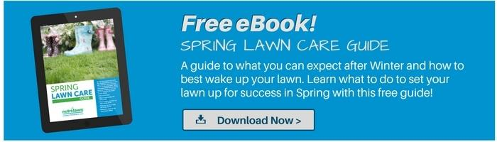 Download your free Spring Lawn Care Guide >