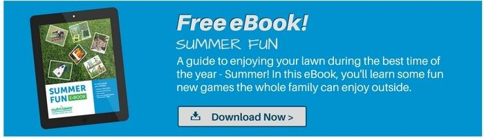 Download your free Summer Fun eBook >