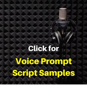 Voicepromptscriptsamplesbutton