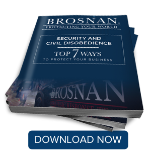 Security Services and Retail Loss Prevention During Civil Unrest eBook Download