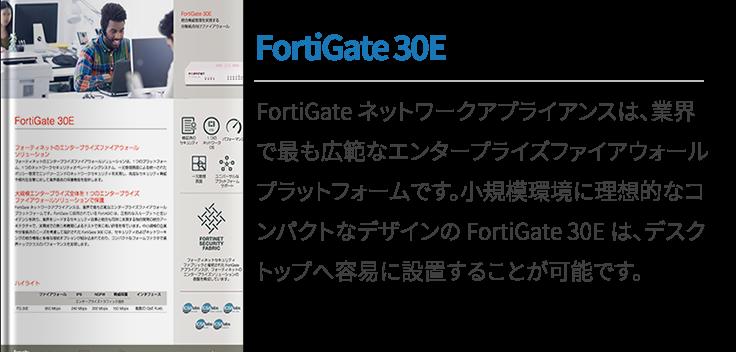FortiGate 30E