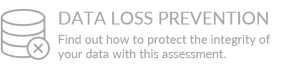 Data Loss Prevention Assessment