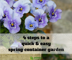 http://blog.dowcoinc.com/4-steps-to-a-quick-and-easy-spring-container-garden