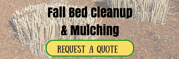 Request a Quote for Fall Bed Cleanup